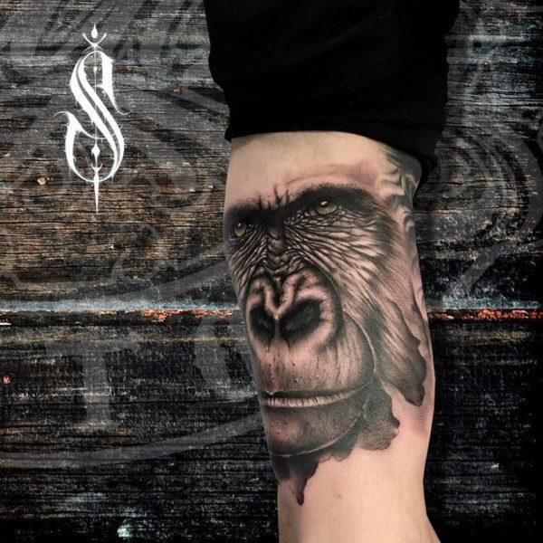gorila-sanchez